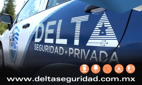 Vehículo Delta Seguridad privada supervisión 2